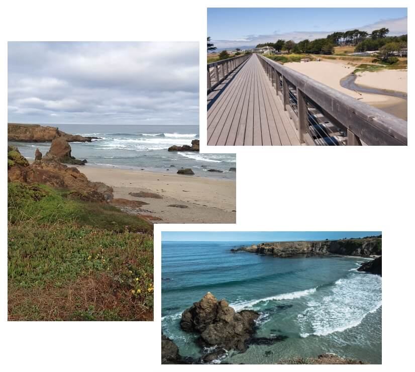 photo collage of beaches